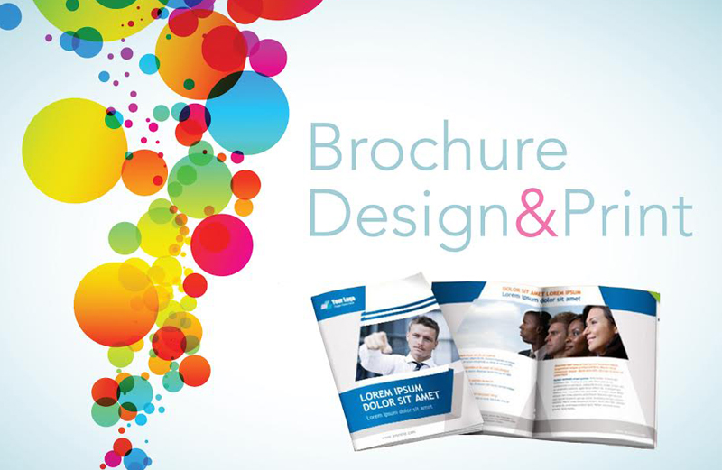 In ấn – Thiết kế Brochure